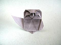 Owlet 2 - Katsuta Kyohei (Rui.Roda) Tags: origami papiroflexia papierfalten buho coruja mocho hibou eule owl owlet 2 katsuta kyohei