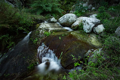 Mountain Creek Elba (Kevin Stuke) Tags: creek mountain river elba plants green water flow shutter speed slow low nd filter stream rocks clear soft
