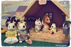 When miniature rabbit meet miniature pony  #SylvanianFamilies #CalicoCritters # # #Miniatures #Dollhouse #Thanksgiving #SeasonOfThanks #MiniatureRabbit #MiniaturePony #Rabbit #Horse #Pon (violet-pegasus) Tags: sylvanianfamilies calicocritters   miniatures dollhouse thanksgiving seasonofthanks miniaturerabbit miniaturepony rabbit horse pony foal