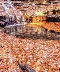 Sanctuary (daddymaverick91) Tags: sunrise basin stream river leaves sanctuary waterfall float iphone fall dawn