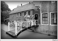 Digifred_Gouda_2016_S__8636 (Digifred.) Tags: gouda zottezaterdag digifred 2016 portret portrait costume beauty people pentaxk3 narren troubadours middeleeuwen historie history nederland netherlands holland