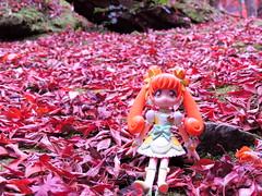 20161126- (watarugogyou) Tags:     curerosetta precure