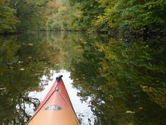Kayak Dart Rob 5 (chris-parker) Tags: kayak river dart canoe kayaking canoeing devon south west perception