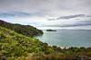 Abel Tasman II (ChiiPicts) Tags: abeltasman newzealand southisland nationalpark abeltasmannationalpark landscape nature outdoors forest ocean