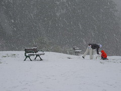 Happy [snowy] Bench Monday! (peggyhr) Tags: peggyhr hbm fallingsnow red benches people dsc09973a clevelanddam vancouver bc canada nosautempopulus niceasitgets~level1 thelooklevel1red heartawards thelooklevel2yellow favtop2049fav thelooklevel3orange artisticperspectives thelooklevel4purple thelooklevel5green platinumheartaward thelooklevel6blue thelooklevel7white