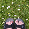 looking down (mumography) Tags: life uk family flowers england people feet nature europe down realpeople