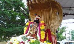 IMG_002 (sri vaishnavam) Tags: kannan uriyadi 2013 triplicane thiruvallikeni purappadu