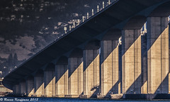 WVCSF_2013-381-Edit-Edit.jpg (rennisk0322) Tags: sanfrancisco landscapes treasureisland baybridge