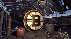 Boston Bruins - Gary Zappelli (Gary Zappelli) Tags: