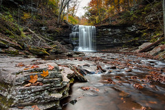 Fallen Leaves (Photosequence) Tags: new york autumn red orange ny fall nature leaves yellow season waterfall leaf harrison seasons united north drop falls glen east foliage pa wright northeast ricketts stated