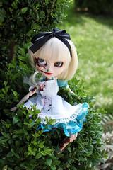 Alice Omega (RequiemArt.com) Tags: doll zombie alice ooak omega pullip custom requeim dgrequiem requiemart