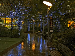 Canary Wharf Path (Deepgreen2009) Tags: park london wet water rain reflections lights evening path paving canarywharf