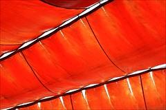 sun shade sail (loop_oh) Tags: sunshadesail sun shade sail segel sonnensegel sonne schutz sonnenschutz orange lanzarote insel isle island kanaren canary vulkan volcano volcanoes vulkane lava hot canaryislands atlantic atlanticocean atlantik ozean meer unesco islascanarias islas canarias césarmanrique césar manrique cesarmanrique cesar timanfaya spanien spain espagne espana isla océanoatlántico españa jameosdelagua agua losjameos jameos pool munidopsispolimorpha munidopsis polimorpha albino krebs krebse crab crabs cancer art kunst