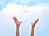 the happy drem.. (حصه العمير) Tags: sky hand weding سماء غيوم فرح أمل طبيعه نيكون سعاده أيادي تفاؤل