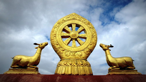 Dharma Wheel - Wheel of Life