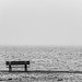 bench at the lakeside