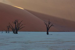 Deadvlei Explored! (Perry McKenna) Tags: africa trees light orange sunrise sand desert dunes safa