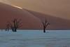 Deadvlei Explored! (Perry McKenna) Tags: africa trees light orange sunrise sand desert dunes safari namibia deadtrees deadvlei deadmarsh
