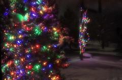 Just Christmas lights on a moonlit night (shawnee's sky) Tags: christmas xmas winter snow colour lights christmaslights
