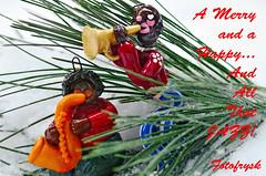 Merry Christmas (fotofrysk) Tags: snow ontario canada jazz pineneedles merrychristmas happynewyear thornhill doughboys nikond7000