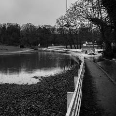 Hilfoots Floods - 05 (ibriphotos) Tags: alva wet rain flooding flood roadclosed clackmannanshire tillicoultry hillfoots marchglen