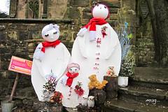 snow...what snow ! (mag2003...) Tags: family teddy snowy bears snowmen owls
