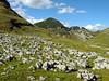 Totes Gebirge • Dead Mountain Range (preze) Tags: sky mountain alps green berg rock austria österreich europa europe day cloudy loser meadow wiese himmel steine alm grün alpen alp steiermark autriche styria felsen gebirge salzkammergut shieling alpinepasture platinumpeaceaward