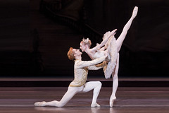 Watch: 6 Valentine's Day ballets