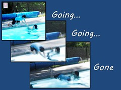 """Photo Collage:  """"Going, going, gone"""" (Ken Whytock) Tags: water pool swimming swim dive diving lessons"""