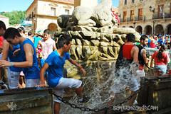 Lunes-Bailas-2014_0444