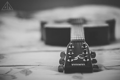 Music = Everything (D4nielHz) Tags: music love guitar guitarra musica everything msica