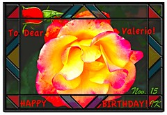 Happy Birthday, Dear Valerio! . (ikan1711) Tags: rose roses allroses redroses yellowroses yellowflowers yellowpetals yellowblooms yellowrose frame card birthday birthdaygreetings birthdayroses happybirthday framedbirthdaycard birthdaycardforvalerio amazingrose