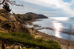 Isla Suasi (fabioresti) Tags: per 2016 islasuasi titikaka lake lago isola island