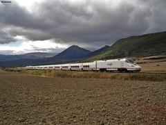130 (firedmanager) Tags: tren train trena alvia altavelocidad talgo talgo250 130 patito navarra ferrocarril railtransport