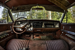 Back Seat (Frank C. Grace (Trig Photography)) Tags: abandoned buick car automotive auto backseat decay rust crusty interior hdr highdynamicrange photography urbex urbanexploration fisheye nikon d810 sigma wildcat