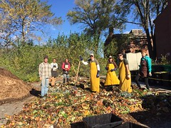 Compost Build - Halloweenie b. 10.31.16
