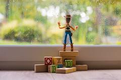 Sadness (Guic_Photographies) Tags: cowboy adventures pixar