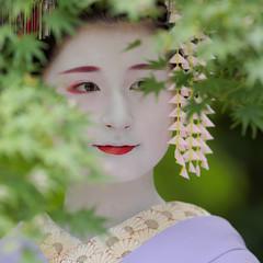 Maiko20161017_03_02 (kyoto flower) Tags: tanan fukuno kyoto maiko 20161017     gaap