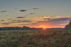 298/366 - Sunrise (Ravi_Shah) Tags: nj cy365 potd nature sony a6000 landscape boundarycreeknaturearea sunrise