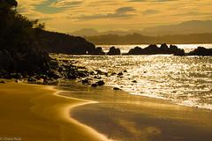 Playas de la Magdalena-Santander (Charo R.) Tags: playa mar airelibre arena paseos naturaleza sol