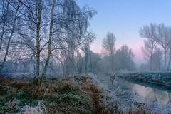 moor am morgen (iltis-aura) Tags: mksphoto moor sonyalpha6000 winter
