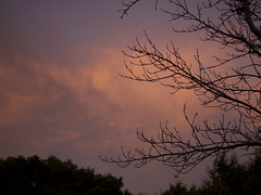 Sunrise 20161119 (caligula1995) Tags: 2016 clouds morning plumtree rain sunrise