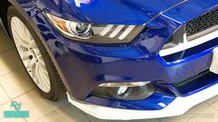 Mustang_15 (holloszsolt) Tags: ford mustang 50 outdoor vehicle sport car nanolex si3 hd autokeramia