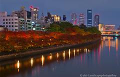 (daidai3214) Tags: pentax k5ii hdpentaxda1685mmf3556eddcwr       japan night