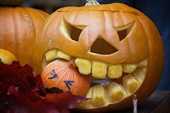Pumpkins (Marie Godliman) Tags: carving carve funny fun amusing clever pumpkin pumpkins halloween orange market