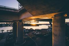 Under the Deck (scotty-70) Tags: sony sun sunset bridge nsw australia sydney