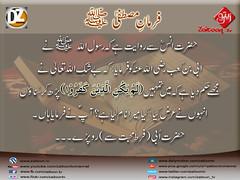 27-11-16) dz group (zaitoon.tv) Tags: mohammad prophet islamic hadees hadith ahadees islam namaz quran nabi zikar