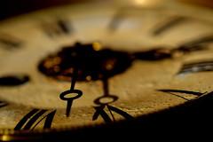 """Macro Mondays: """"ARROW"""" (PAULAPGS) Tags: macro mondays arrow reloj watch"""