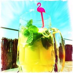 Sunday in apple, lemon & mint (Helldorado Berlin) Tags: summer berlin fruits juice mint pinkflamingo lime coctail glas rummelsburg hipstamatic kodotxgrizzledfilm mattyalnlens