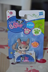 Petshop 2388 (MissLilieDolly) Tags: bear horse dog chien pet pets bird cat cheval chat panda tiger collection figurines dolly figurine miss animaux petshop tigre oiseau lilie hasbro ours 2388 missliliedolly